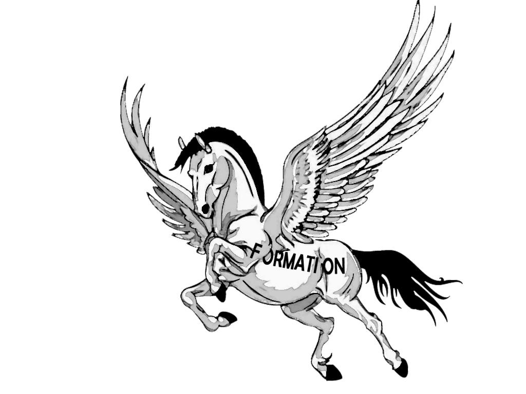 A cheval sur la qualité